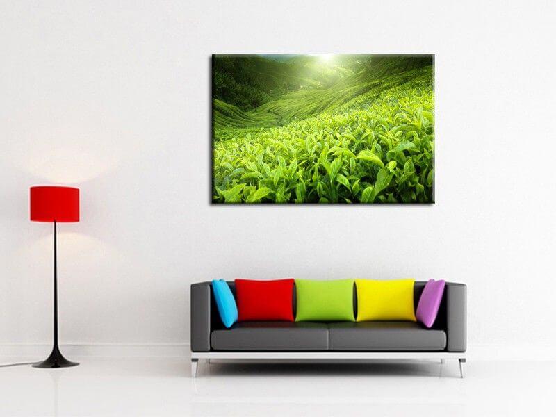 tableau d co bambou zen tableau d co fleurs. Black Bedroom Furniture Sets. Home Design Ideas