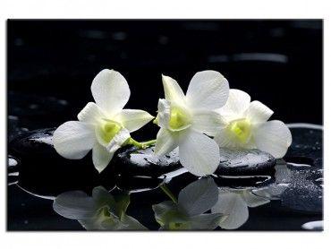 Tableau zen deco design orchidée blanche