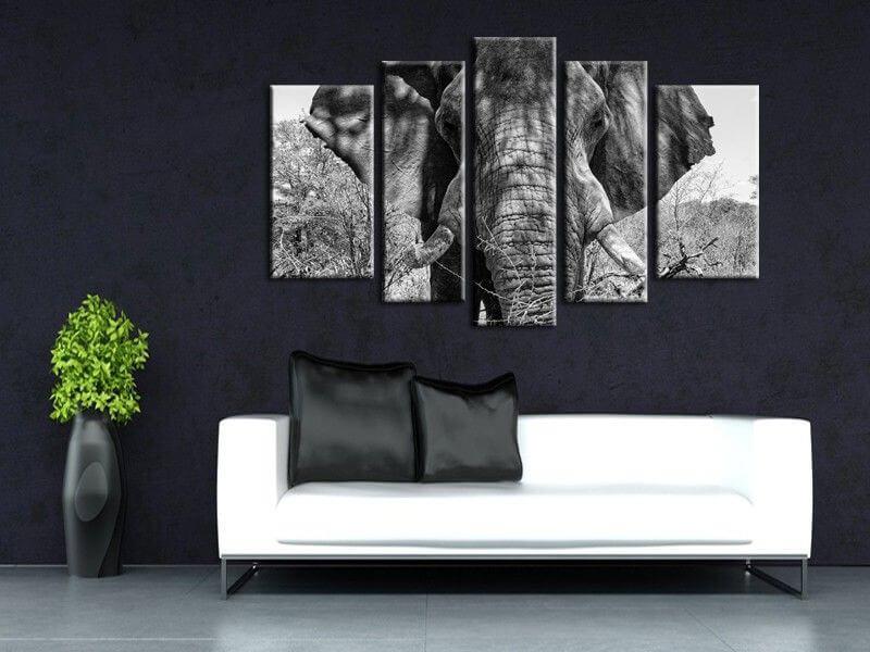 tableau moderne l phant d 39 afrique d coration int rieure hexoa. Black Bedroom Furniture Sets. Home Design Ideas