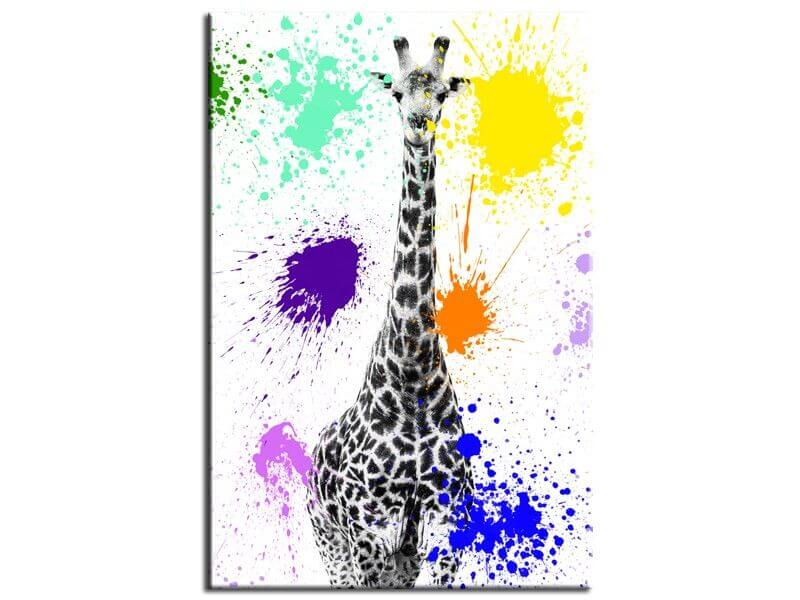 tableau design colors pop collection girafe tableaux deco hexoa. Black Bedroom Furniture Sets. Home Design Ideas