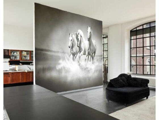 papier peint chevaux en noir et blanc pas cher sur la. Black Bedroom Furniture Sets. Home Design Ideas