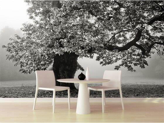 Papier peint noir et blanc déco arbre ancien