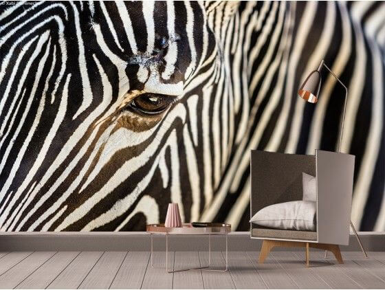 papier peint z bre d co animaux en noir et blanc pas cher hexoa. Black Bedroom Furniture Sets. Home Design Ideas