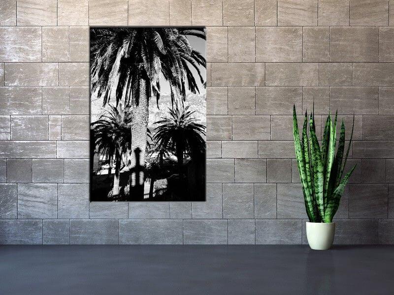 Tableau deco noir et blanc palmiers mont n gro pas cher for Tableau photo noir et blanc