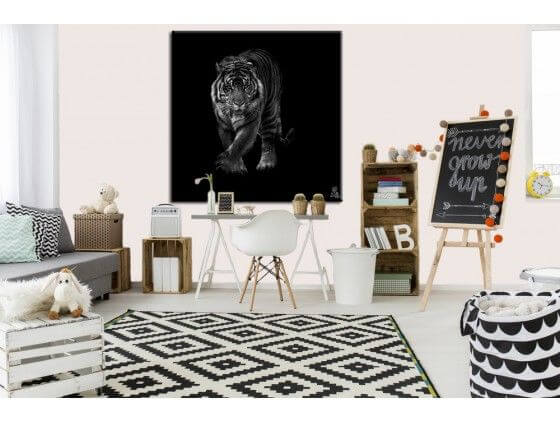 tableau animaux noir et blanc tigre en approche pas cher hexoa. Black Bedroom Furniture Sets. Home Design Ideas