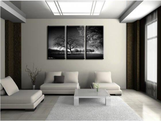 Tableau noir et blanc déco nature