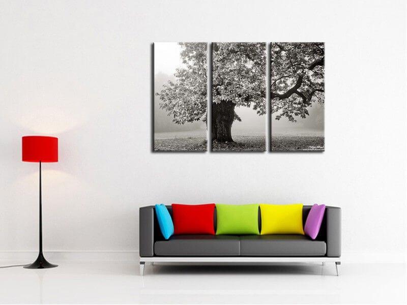 Tableau contemporain photo arbre noir et blanc vente en ligne - Tableau noir en ligne ...