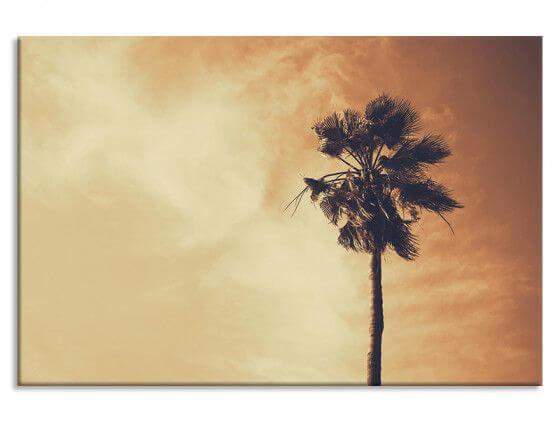 Tableau moderne palmier désert