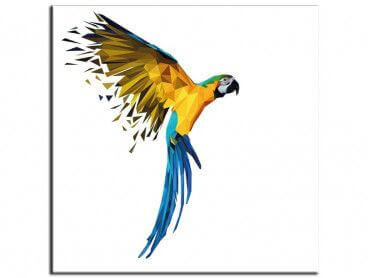 Tableau cadre deco perroquet