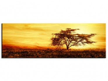 Tableau déco paysage savane