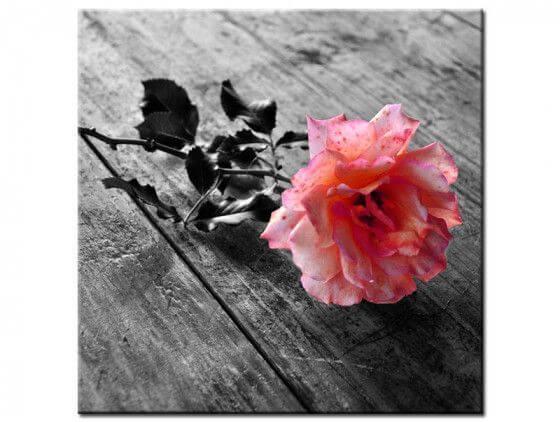 tableau fleurs roses pas cher vente en ligne de tableaux d co. Black Bedroom Furniture Sets. Home Design Ideas
