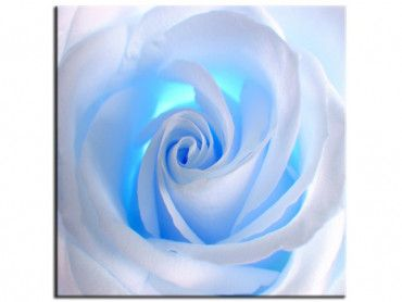 Tableau design blue roses