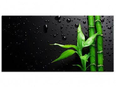 Tableau moderne bamboo over black
