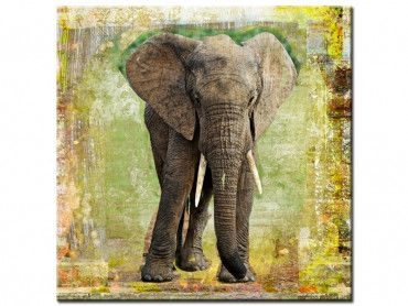 Tableau contemporain deco elephant