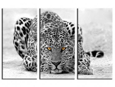 Tableau design déco Leopard noir et blanc
