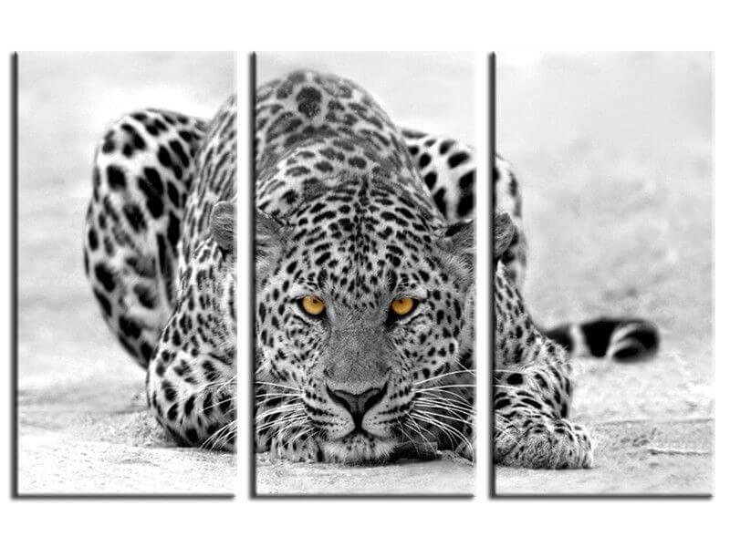 tableau d co animaux leopard noir et blanc achat en. Black Bedroom Furniture Sets. Home Design Ideas