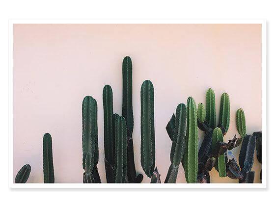 Cadre deco mur de cactus