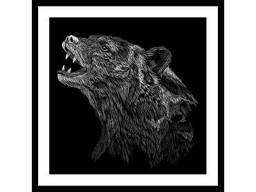 Poster noir et blanc l'ours gronde