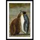 Affiche moderne les pingouins amoureux
