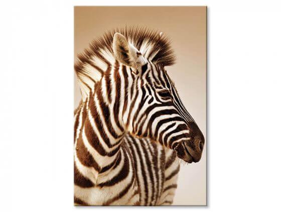 Tableau zebre champs prairie 3 tableau zebre et jolies rayures