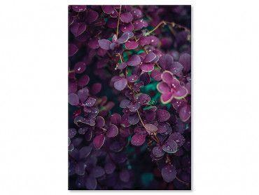 Tableau rosée de printemps