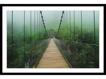 Cadre pont suspendu foret