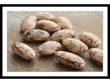 Cadre haricots secs pour cuisine