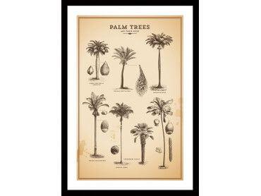 Cadre deco herbier tropical