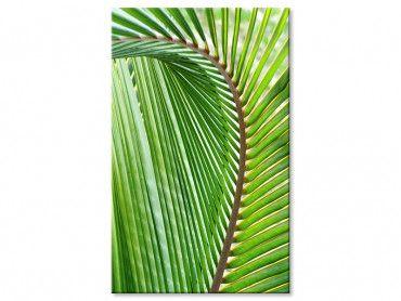 Tableau tropical Feuille de palmier