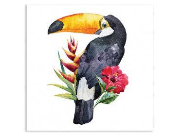 Cadre tropical le toucan fleuri