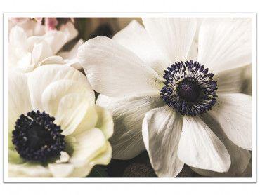 Cadre photo fleur blanche au coeur violet