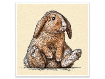 Affiche enfant lapin belier sur son arriere train