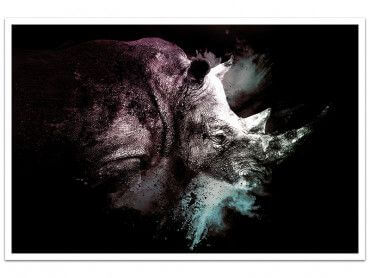 Cadre Wild Explosion rhinoceros