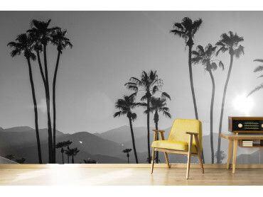 Papier peint noir et blanc palmiers - palm springs
