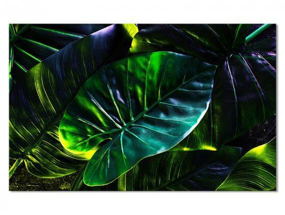Tableau Feuilles Tropicales en Forêt Amazonienne