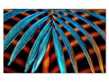 Tableau Photo Tropical Leaf à la Lumière du Jour