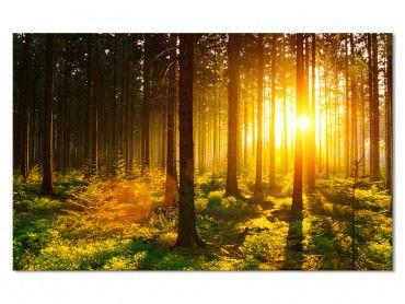 Tableau toile paysage La forêt