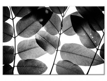 Tableau Reproduction Experiments with Leaves I