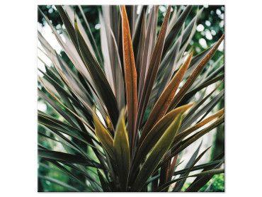 Tableau fleur de Yucca et forêt tropicale