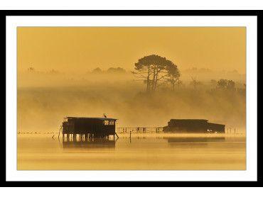 Cadre photo tonne landaise au petit matin