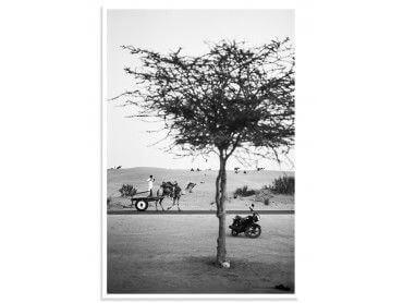 """Poster Photo paysage """"Jaisalmer, Rajasthan"""""""