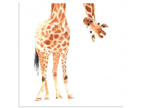 Affiche dessin coucou de girafe