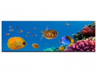Tableau deco poissons de mer et tortue