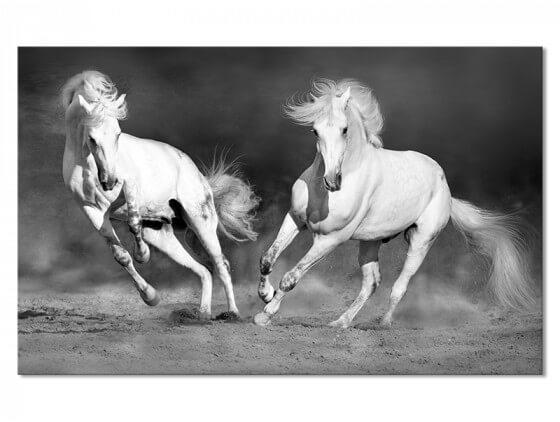 Tableau deco cheval camarguais noir et blanc