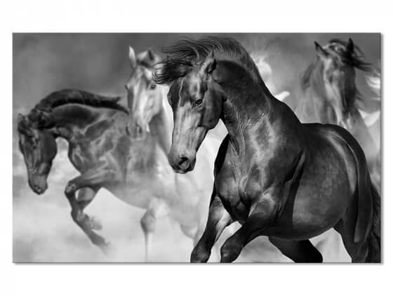 Tableau decoratif cheval sauvage en plein galop