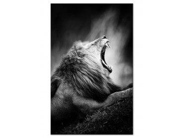 Tableau deco noir et blanc lion rugissant
