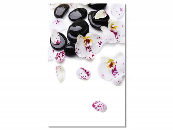 Tableau decoratif fleurs d'orchidees