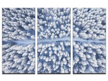 Tableau Bleue de Neige blanche