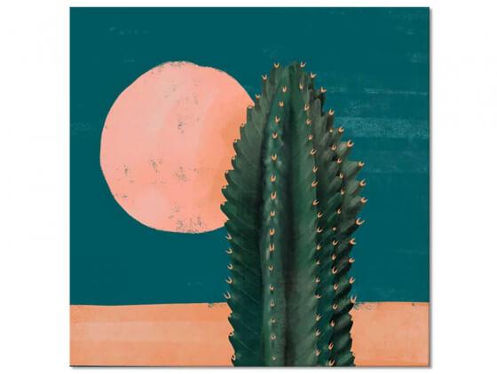 Tableau illustration Cactus et Soleil Rose