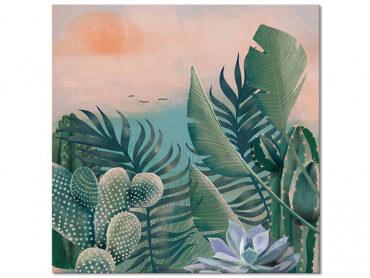 Tableau illustration Jardin succulentes et Cie